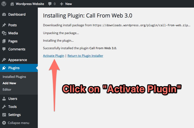 "Click on ""Activate Plugin"""